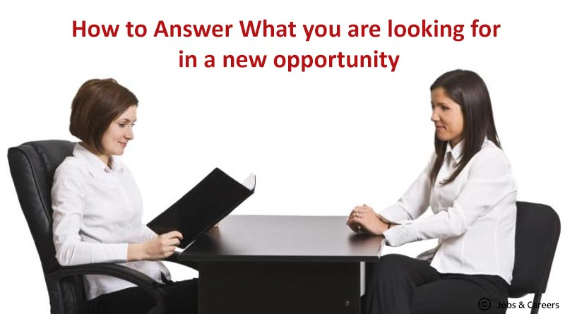 How to Answer What you are looking for in a new opportunity