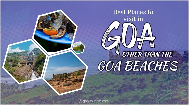 best places to visit in Goa image