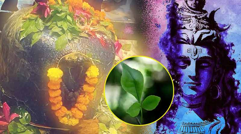 Lord Shiva is offered bel leaves