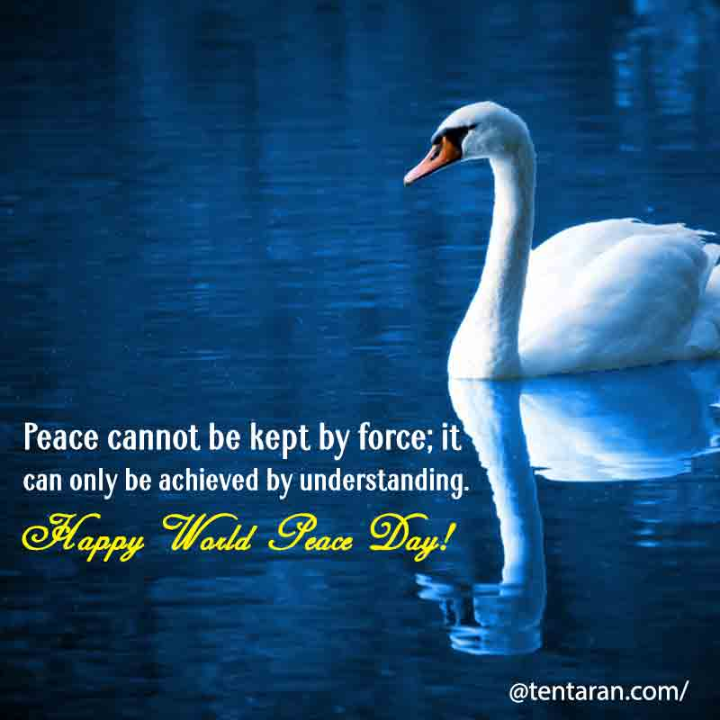 world peace day images2