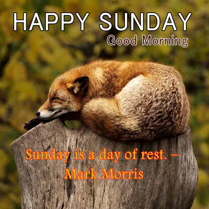 happy sunday quotes with images13