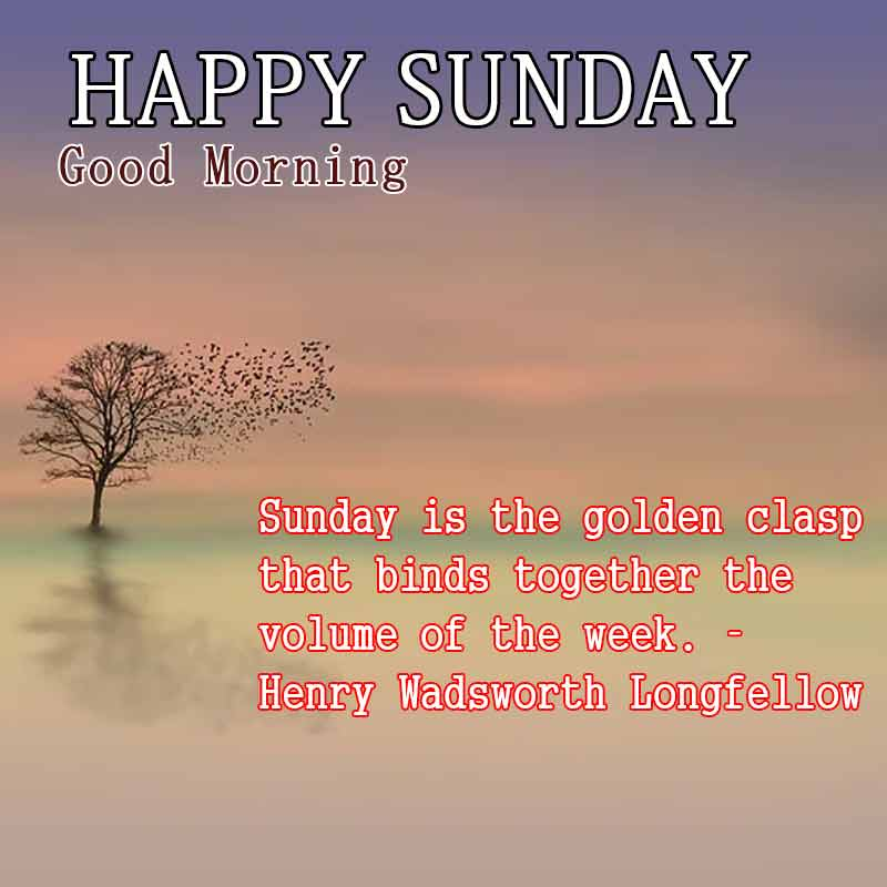 happy sunday quotes with images14