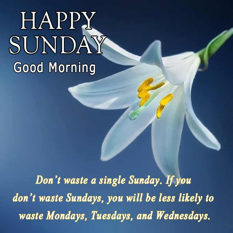 happy sunday quotes with images23