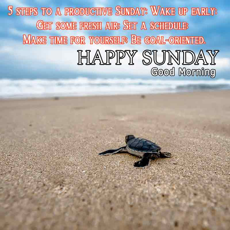 happy sunday quotes with images29
